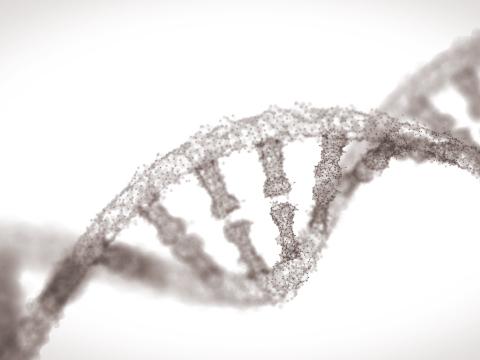 痩身3回体験+DNA解析